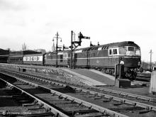 D5330 and D5336 with the 17.45 to Waverley, 14 Apr 1960