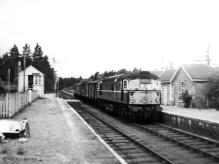 D5307 at Dinnet with the penultimate freight from Ballater on 13 July 1966,