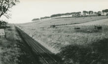 Looking South, 6/10/1954
